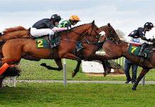Wedden op paarden bij het Cheltenham Festival