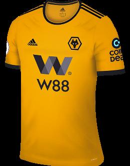 Wedden op Wolverhampton Wanderers
